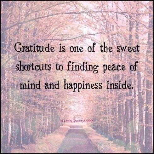 Gratitude is a Shortcut